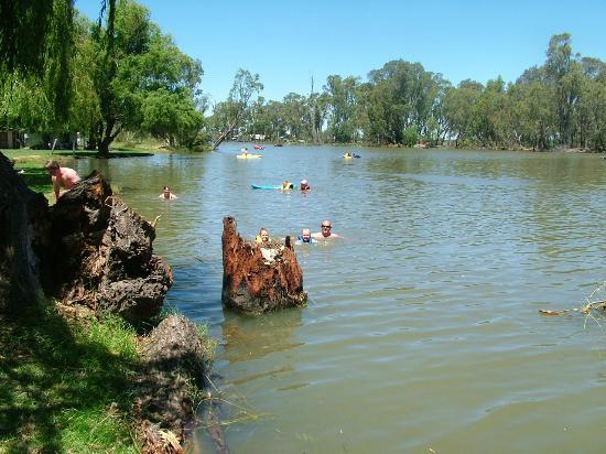 Cohuna Australia  city photos gallery : Cohuna: fotografía de Cohuna Waterfront Holiday Park, Cohuna ...