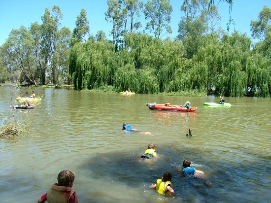 Cohuna Australia  City pictures : Cohuna: fotografía de Cohuna Waterfront Holiday Park, Cohuna ...