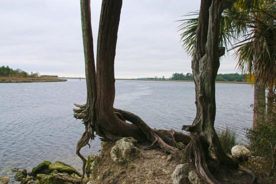 San Marcos de Apalache Historic State Park: Confluence of Wakulla and St. Marks Rivers