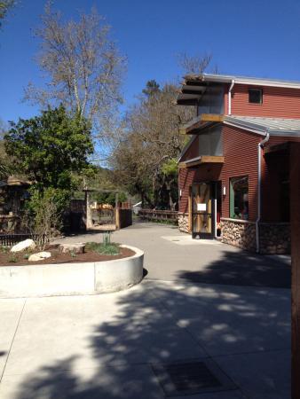 Charles Paddock Zoo : Gift shop