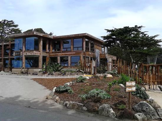 What A View Review Of Centrally Grown Cambria Ca