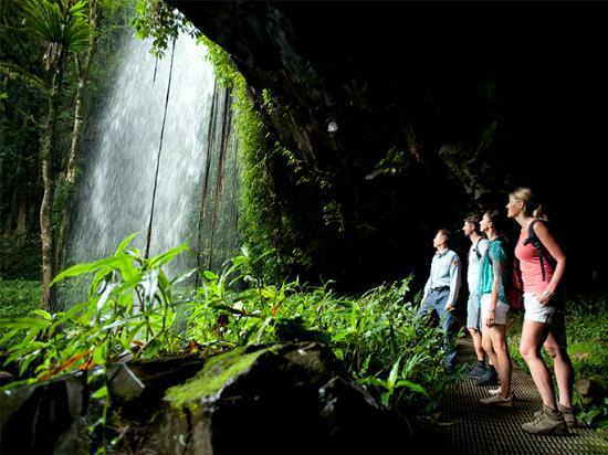 Dorrigo Waterfalls