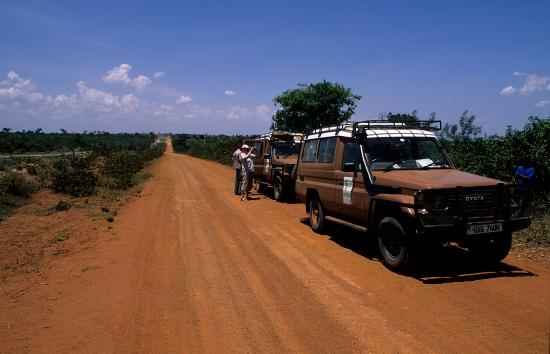 Churchill Safaris & Travel - Day Tours