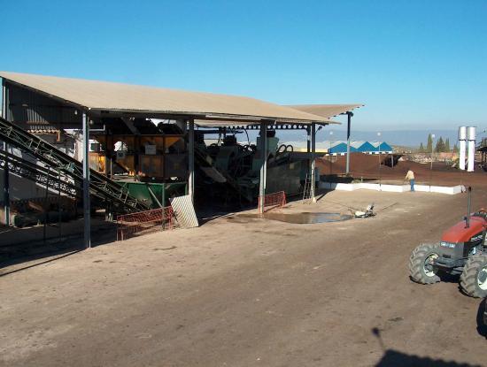 Arjonilla, Spain: PATIO DE LA ALMAZARA