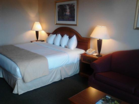 Quality Inn Detroit - Troy: Room 211