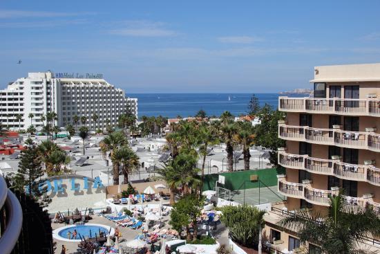 Picture from the roof tigotan lovers friends playa de - Hotel noelia tenerife ...