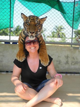 Damnoen Saduak, تايلاند: tiger