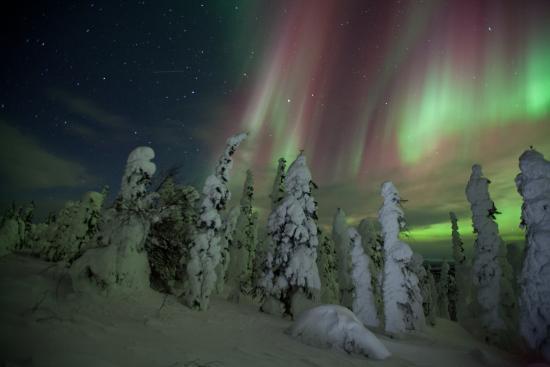 The Aurora Chasers by Ronn & Marketa Murray : photo I took with Ronn & Marketa's tour