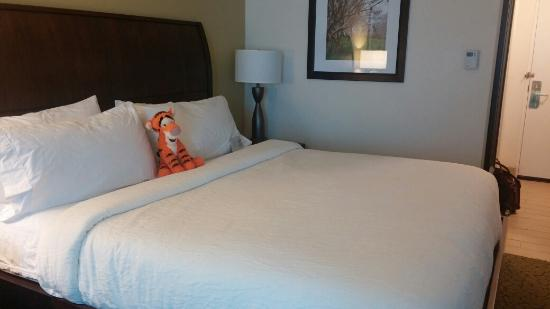 Hilton Garden Inn Orlando East/UCF Area: Photo of room, king size bed.