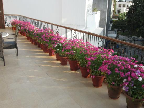 Ahuja Residency Golf Links: Roof terrace