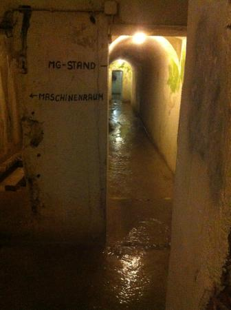 Hotel Zum Turken WWII Bunkers : the tunnels