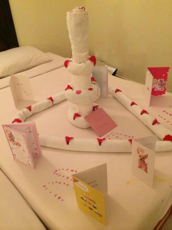 Towel art for my birthday Picture of Viva Sharm Hotel Sharm El