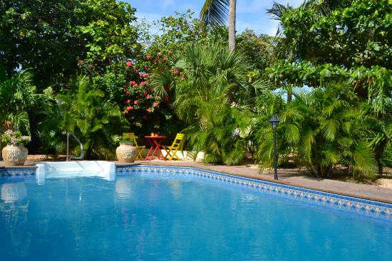 Wonders Boutique Hotel: our refreshing pool