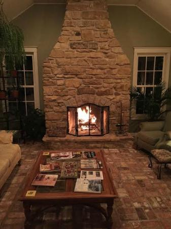 Lindenhof Bed and Breakfast : Beautiful fire