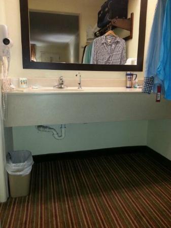 Quality Inn & Suites Civic Center : Vanity area