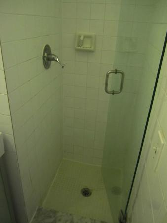Greenview Hotel: The miniature shower - an up right coffin