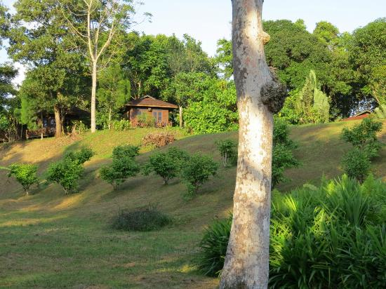 Sepilok Forest Edge Resort: View of Bungalow from the Hotel's Grounds