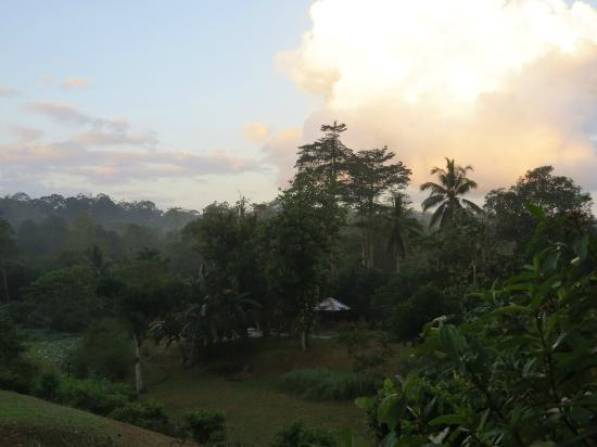 Sepilok Forest Edge Resort: View of Sunset from Balcony of Bungalow