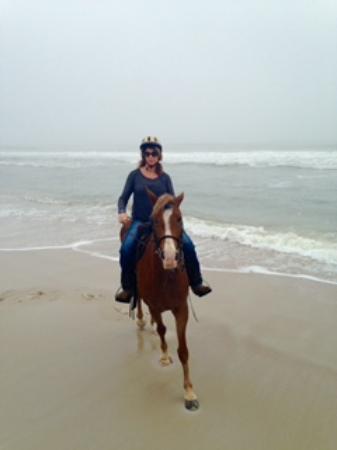 Happy Trails Walking Horses: Spirit is a fun horse!