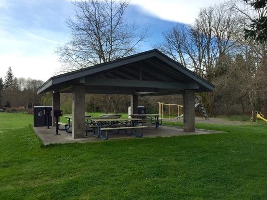 Buck Lake County Park: picnic and play area