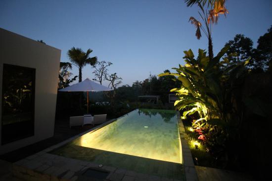 Private Infinity Pool Picture Of Senetan Villas Spa Resort Payangan Tripadvisor