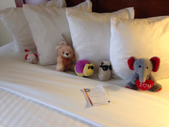 Quality Inn & Suites: Sweet housekeeper