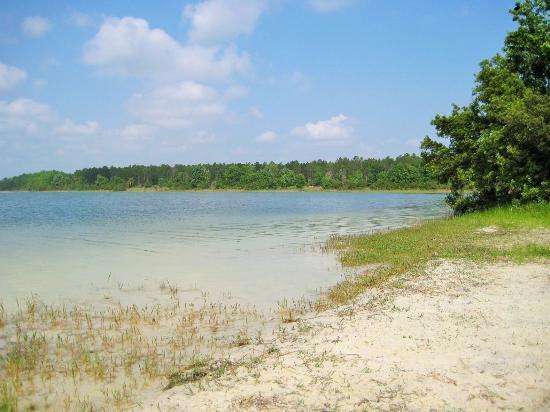 Ocklawaha, FL: Lemon Point