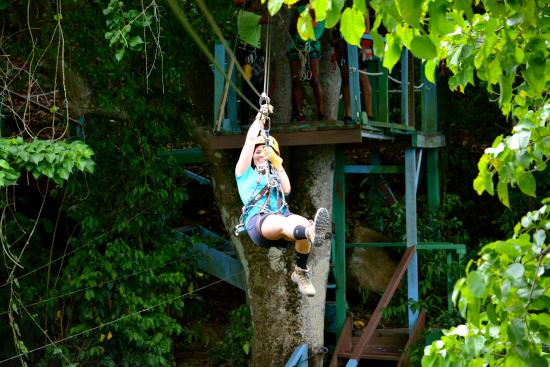 Antigua Rainforest Canopy Tour : Zipping through Antigua