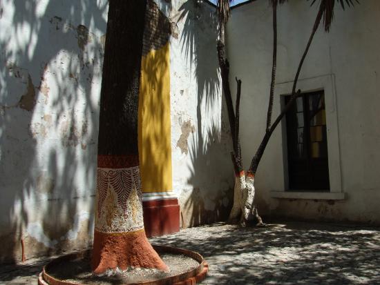 Ceramic Museum (Museo Regional de la Ceramica): 庭の樹にもペインティング