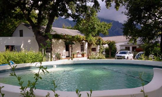 The Oak Tree Picture Of Bo La Motte Farm Cottages Franschhoek Tripadvisor