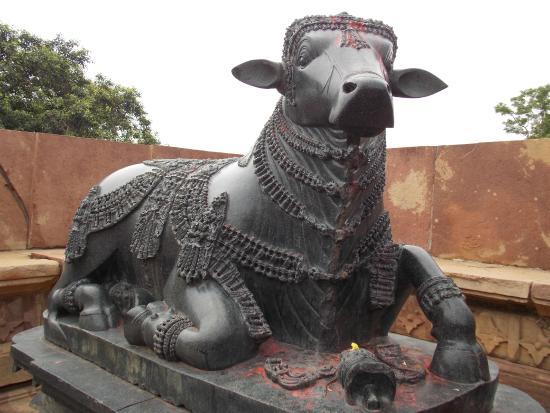 Warangal, Hindistan: Nandi at Ramappa