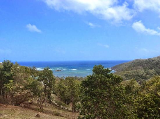 Spring House Bequia: Ocean Views