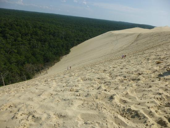 vue d en haut picture of dune du pilat la teste de buch tripadvisor. Black Bedroom Furniture Sets. Home Design Ideas