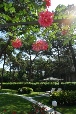 Hotel Greif Lignano: Park