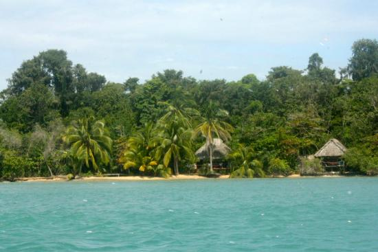 Al Natural Resort: First view of the resort