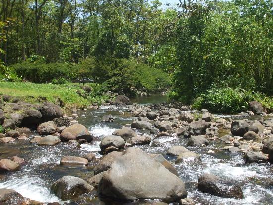 Saint-Joseph, Martinique: La rivière blanche
