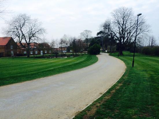 Heacham Manor Hotel: Walking dogs round the grounds...