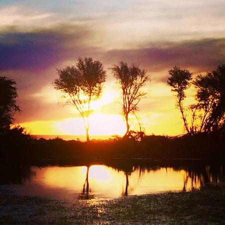 Mattanu Private Game Reserve: Sundowners during the game drive