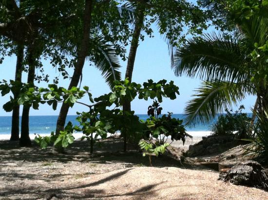 Hotel Las Brisas del Pacifico: View from the pool