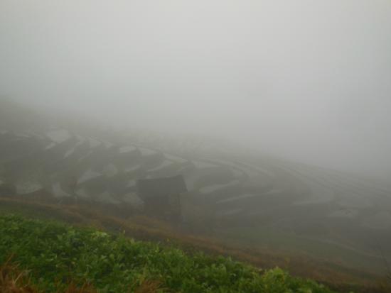 Dragon's Backbone Rice Terraces : Poor visibility