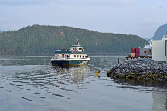 Seaside Suites Gros Morne Newfoundland : Ferry that passes buy.