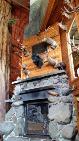 Bass Pro Shop: fireplace