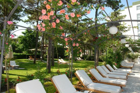 Hotel Greif Lignano: Pool