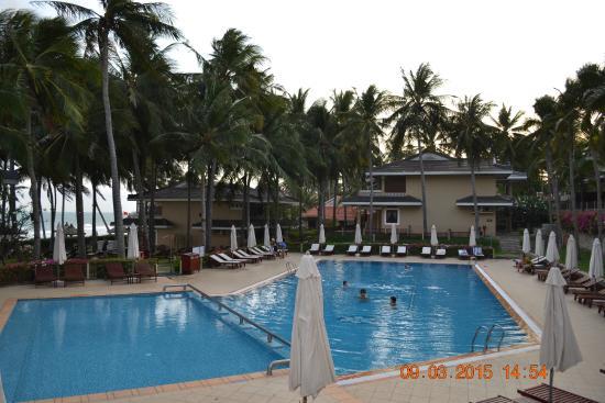 Amaryllis Resort & Spa : Наш бассейн