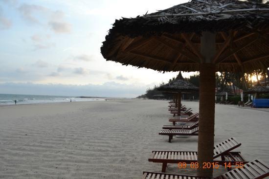 Amaryllis Resort & Spa : пляж
