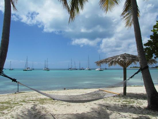 Anegada Reef Hotel: View of the beach