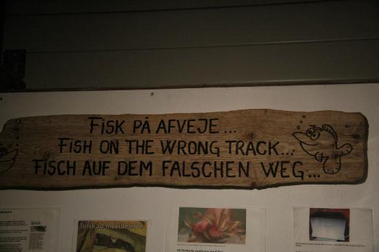 Jyllandsakvariet : Bsp. für Übersetzungsfehler
