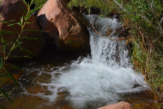 Cottonwood Campground : Niewielki potok który pozwala się ochłodzić