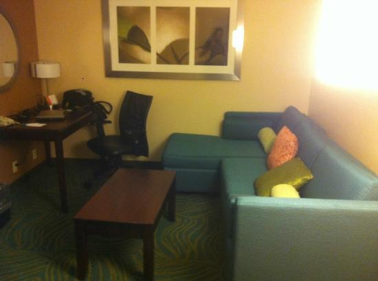 SpringHill Suites Grand Rapids Airport Southeast : sala