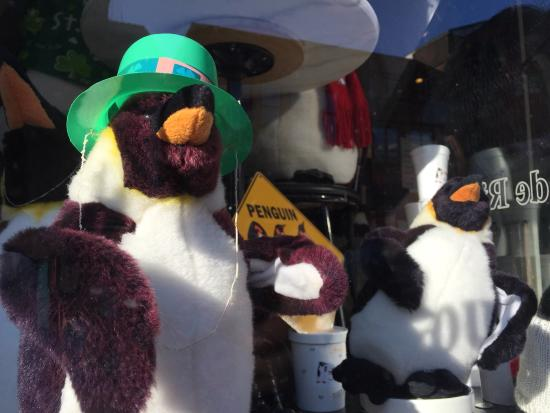 Annapolis Ice Cream Company : Meet the penguins